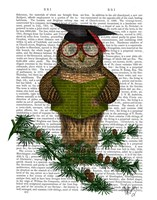 Owl Reading On Branch Fine Art Print