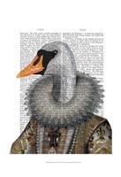 Elizabethan Swan Framed Print