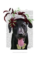 Black Labrador With Green Fascinator Fine Art Print