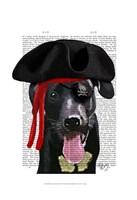 Black Labrador Pirate Fine Art Print