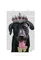 Black Labrador With Tiara Fine Art Print