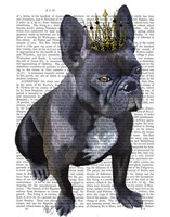 French Bulldog King Fine Art Print