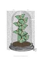 Green Butterflies in Bell Jar Framed Print