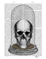 Skull In Bell Jar Framed Print