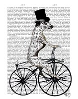 Dalmatian on Bicycle Fine Art Print