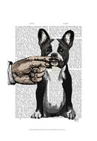 French Bulldog and Finger Moustache Fine Art Print