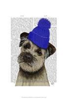 Border Terrier with Blue Bobble Hat Framed Print