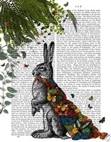 Hare with Butterfly Cloak Fine Art Print