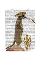 Meerkat Cowboy Fine Art Print