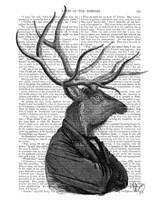 Deer Portrait 1 Framed Print