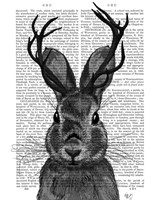 Jackalope with Grey Antlers Fine Art Print