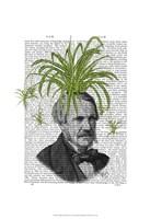 Spider Plant Head Framed Print