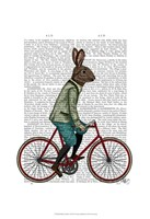 Rabbit On Bike Fine Art Print