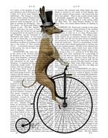 Greyhound on Black Penny Farthing Bike Fine Art Print