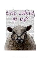 Ewe Looking at Me DeNiro Sheep Framed Print