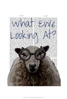 What Ewe Looking At Framed Print