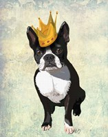 Boston Terrier and Crown Fine Art Print