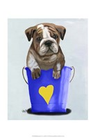 Bulldog Bucket Of Love Blue Framed Print