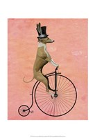 Greyhound on Black Penny Farthing Fine Art Print