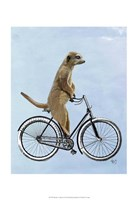 Meerkat on Bicycle Fine Art Print
