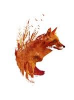 Plattensee Fox Fine Art Print