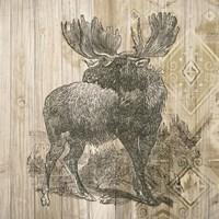 Natural History Lodge VIII Framed Print