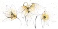 Gilded Graphite Floral Trio Fine Art Print