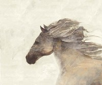 Into the Wind Ivory Fine Art Print