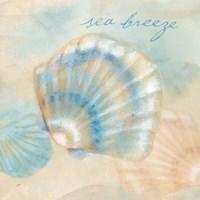 Watercolor Shell Sentiments I Framed Print