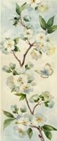Cherry Bloom Panel I Framed Print
