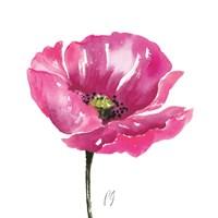 Poppies Tempo I Fine Art Print