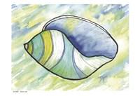 Underwater Shell 2 Fine Art Print