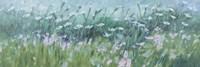 Wild Flowers 03 Fine Art Print