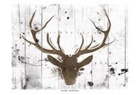 Brown Deer Head Fine Art Print