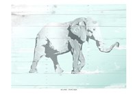 Soft Elephant Fine Art Print