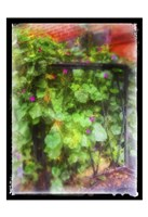 Fence And Gate NYC Fine Art Print
