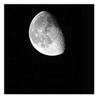 Moonlight 1 Fine Art Print