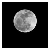 Moonlight 2 Fine Art Print