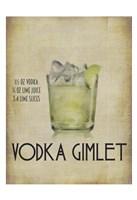 Vodka Gimlet Framed Print