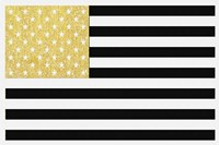 Gold Flag 2 Fine Art Print