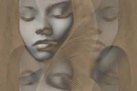 Grey Beauty Framed Print