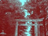 Nikko Gate Fine Art Print