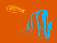Aquarium 2 Fine Art Print