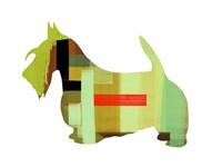 Scottish Terrier 1 Fine Art Print
