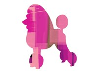 French Poodle Fine Art Print