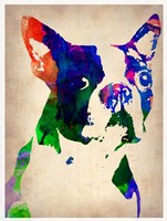 Boston Terrier Watercolor Fine Art Print