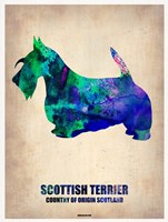 Scottish Terrier 2 Fine Art Print