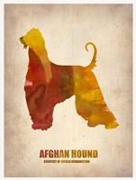 Afghan Hound Fine Art Print