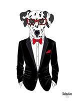 Dalmatian Dog in Tuxedo Framed Print