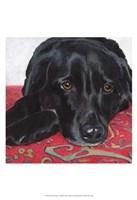 Dlynn's Dogs - Tallulah Fine Art Print